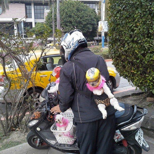 strange things in kaohsiung taiwan