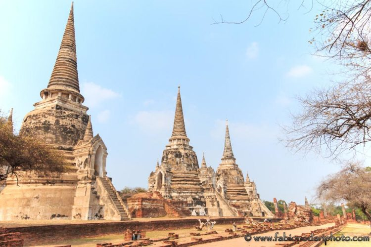 temple in ayutthaya thailand