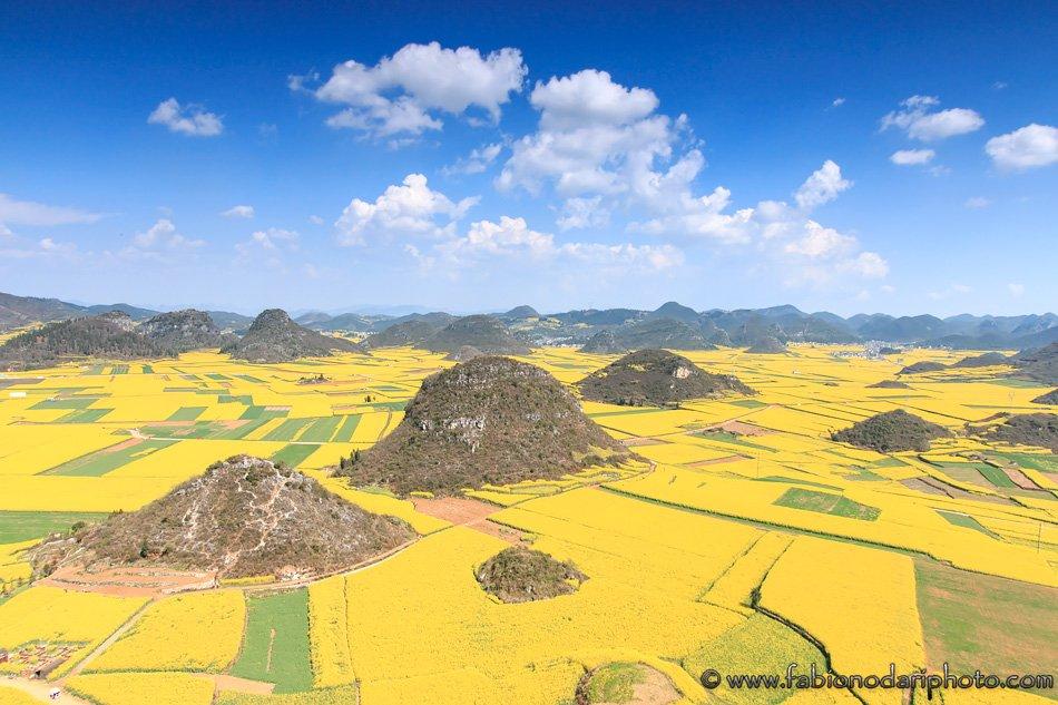 The golden fields of Luoping (罗平): things to do - Fabio Nodari