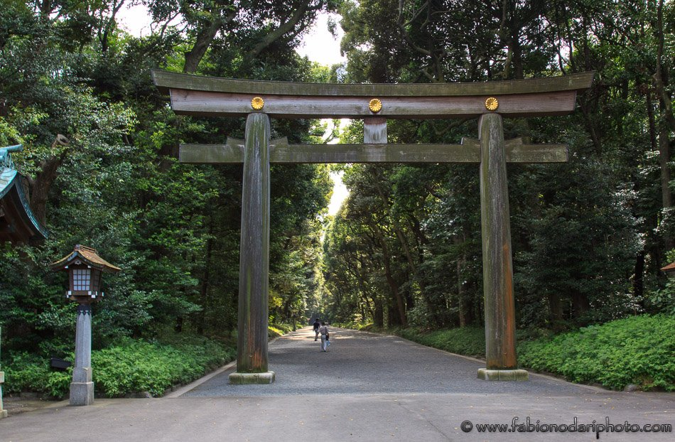 Torii gate in Tokyo