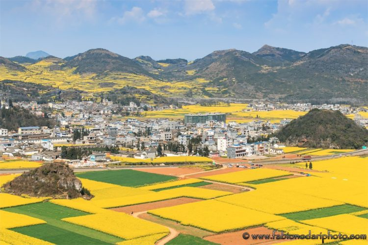The Golden Fields Of Luoping Things To Do