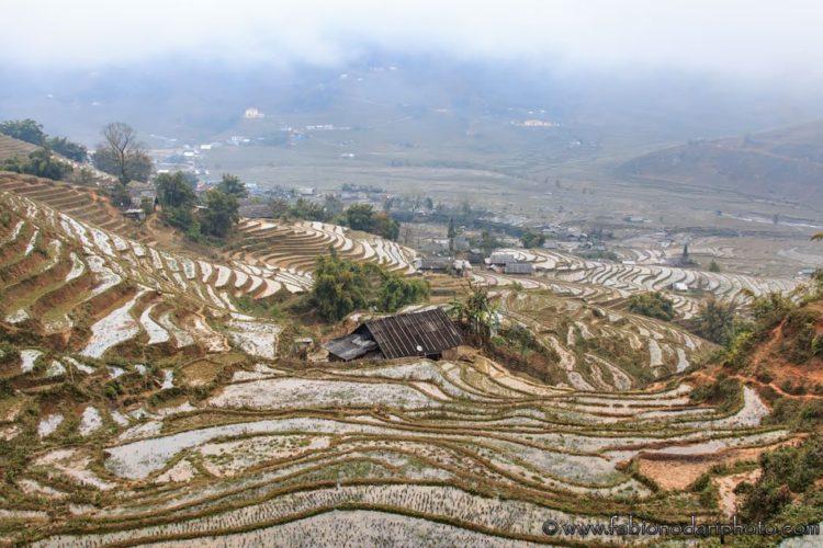 terrazze di riso a sapa in vietnam