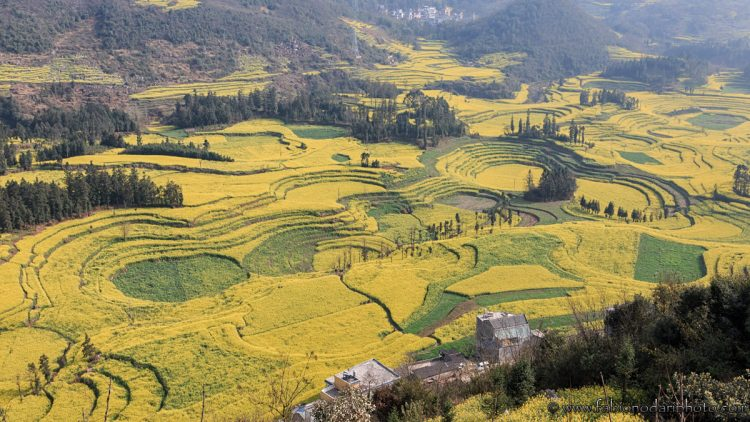 luoping in yunnan