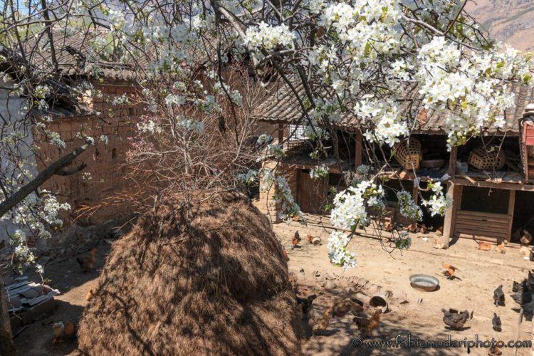 villaggi yunnan