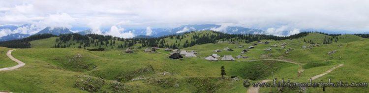plateau velika planina