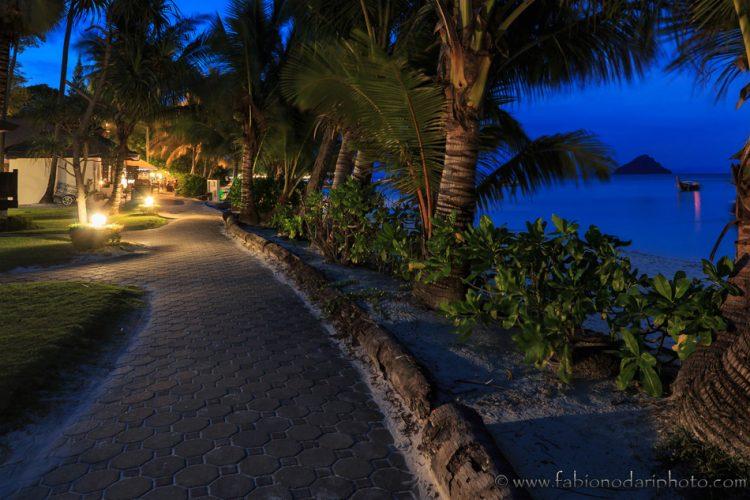 cosa vedere e cosa fare a phi phi island