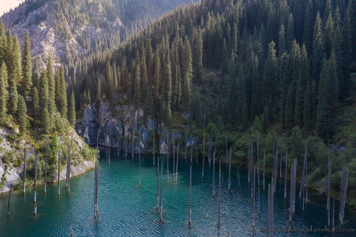 Kaindy Lake's sunken forest