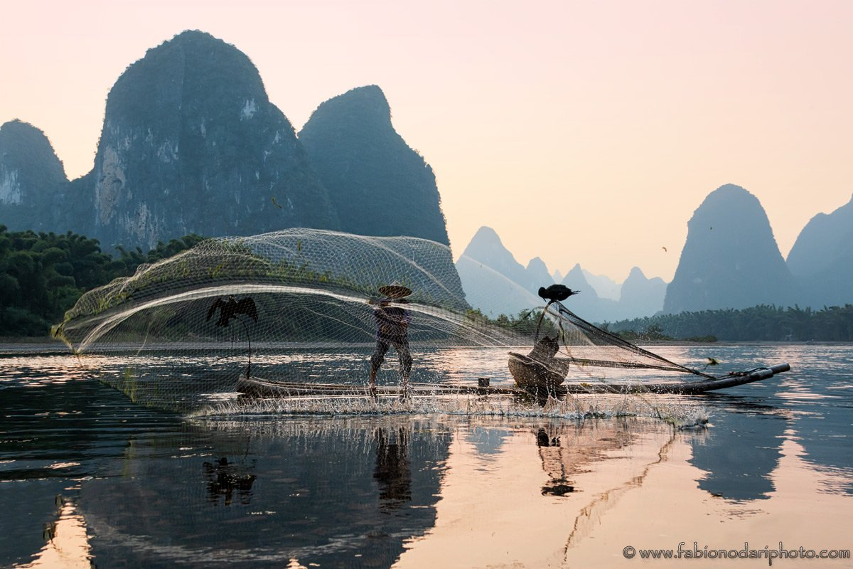 xingping fisherman cormorant